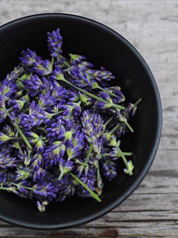 Bowl Of Lavender