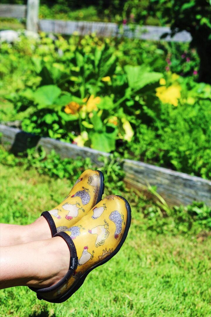 Gotta Have Chicken Gardening Shoes!