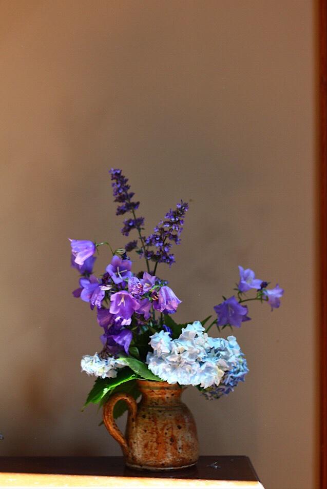 Garden Flowers Stole My Heart