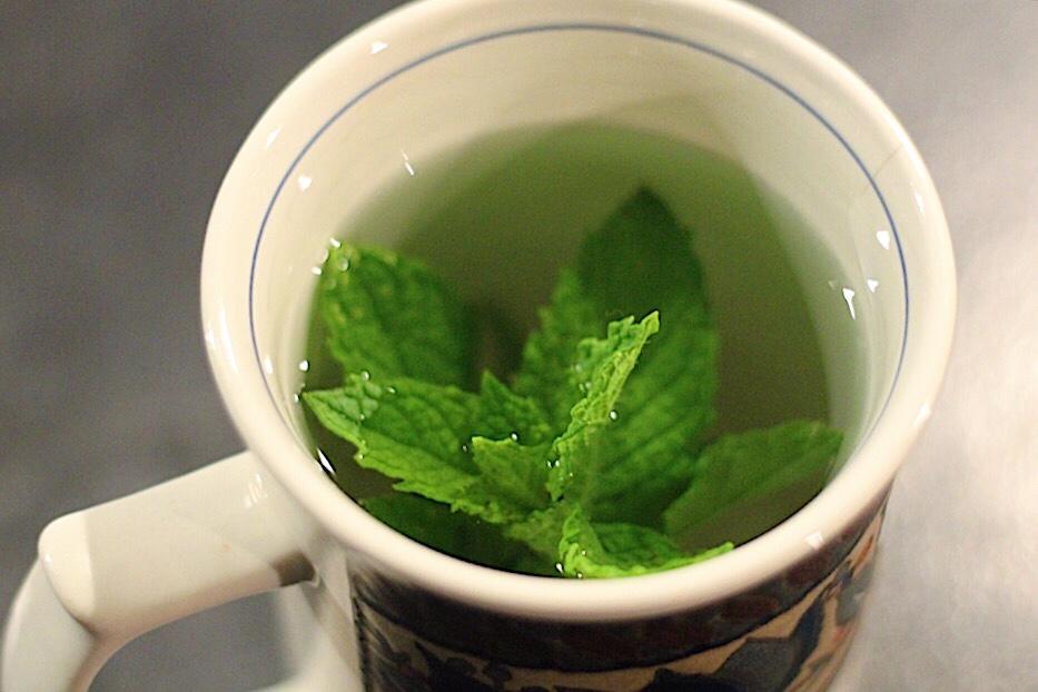 Kate's Fresh Mint Tea From The Garden