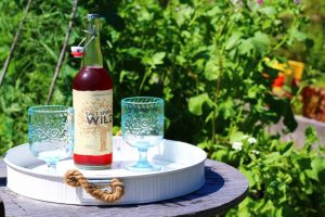 Sipping Saltspring Cider in the Sun