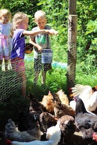 Children Throwing Chicken Scratch