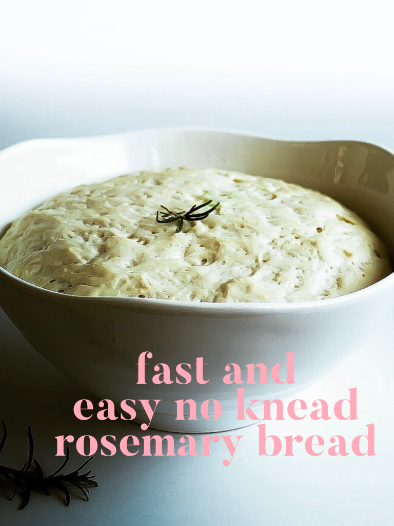 Fast And Easy No Knead Bread In One Day