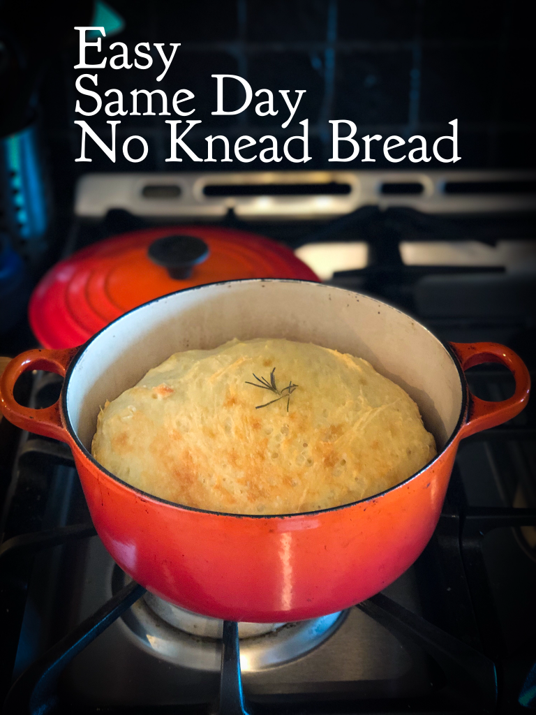 Easy No Knead Bread Recipe Made In One Day