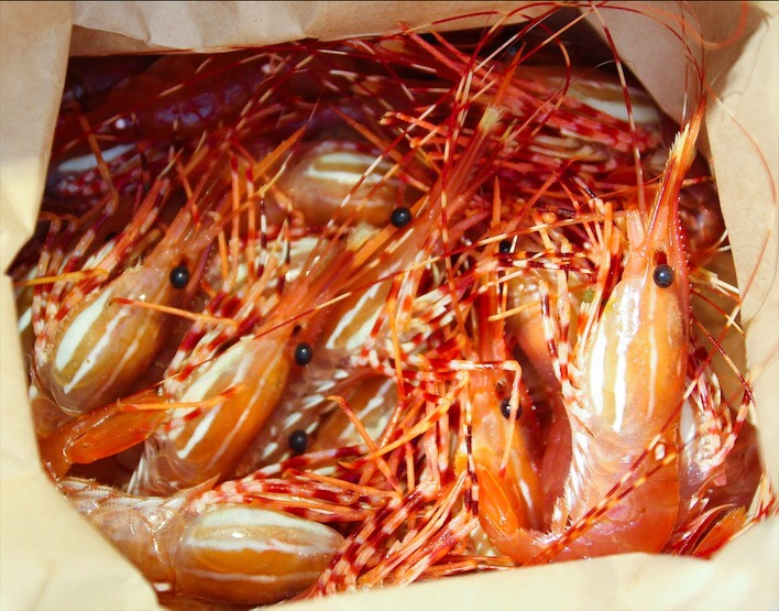 Fresh BC Spot Prawns (Shrimp)