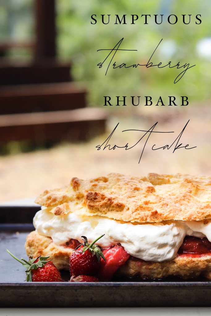 Sumptuous Strawberry Rhubarb Shortcake
