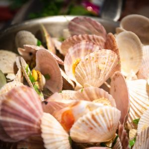 Quick Cooking Scallops Are Healthy And Delicious