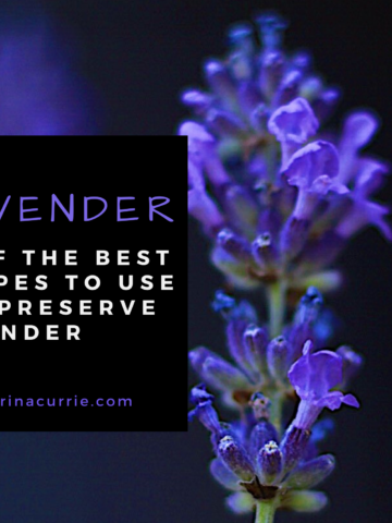 Best Recipes To Use And Preserve Lavender