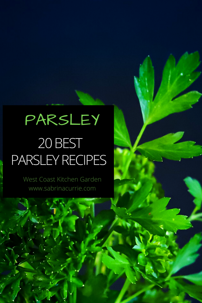 Best Recipes For Parsley, the easy to grow garden herb