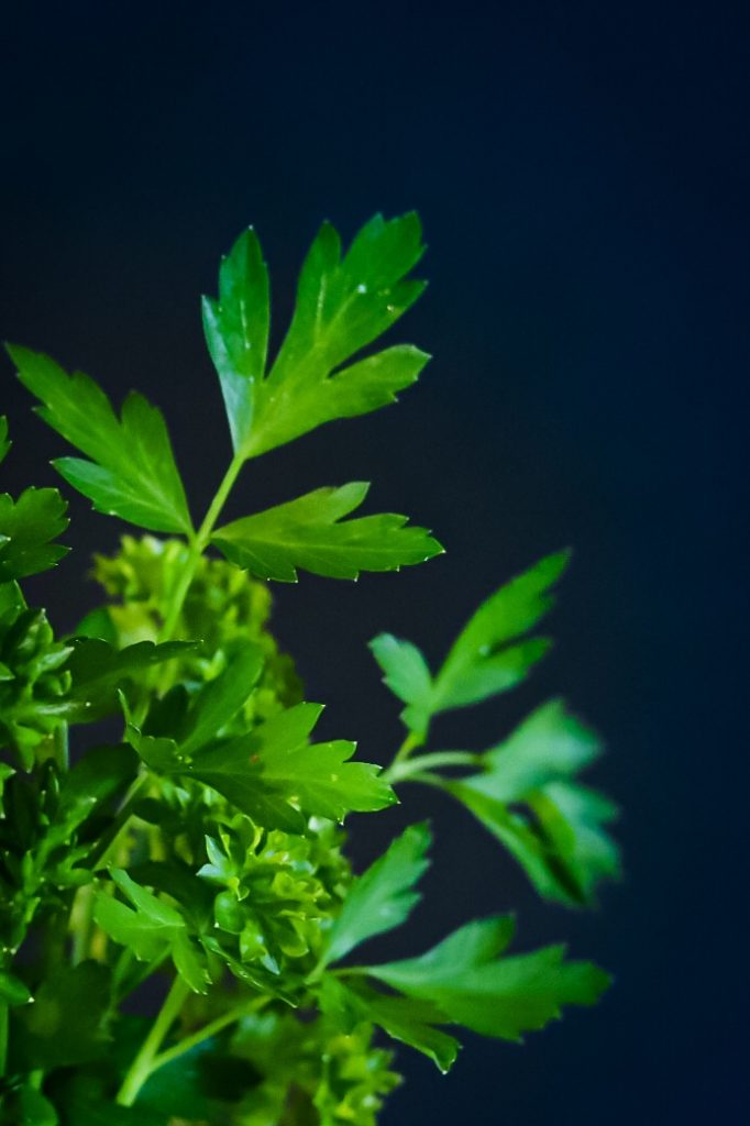 Parsley Recipes For Budget Friendly Meals