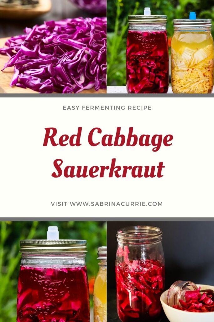 Red Cabbage Sauerkraut Pin
