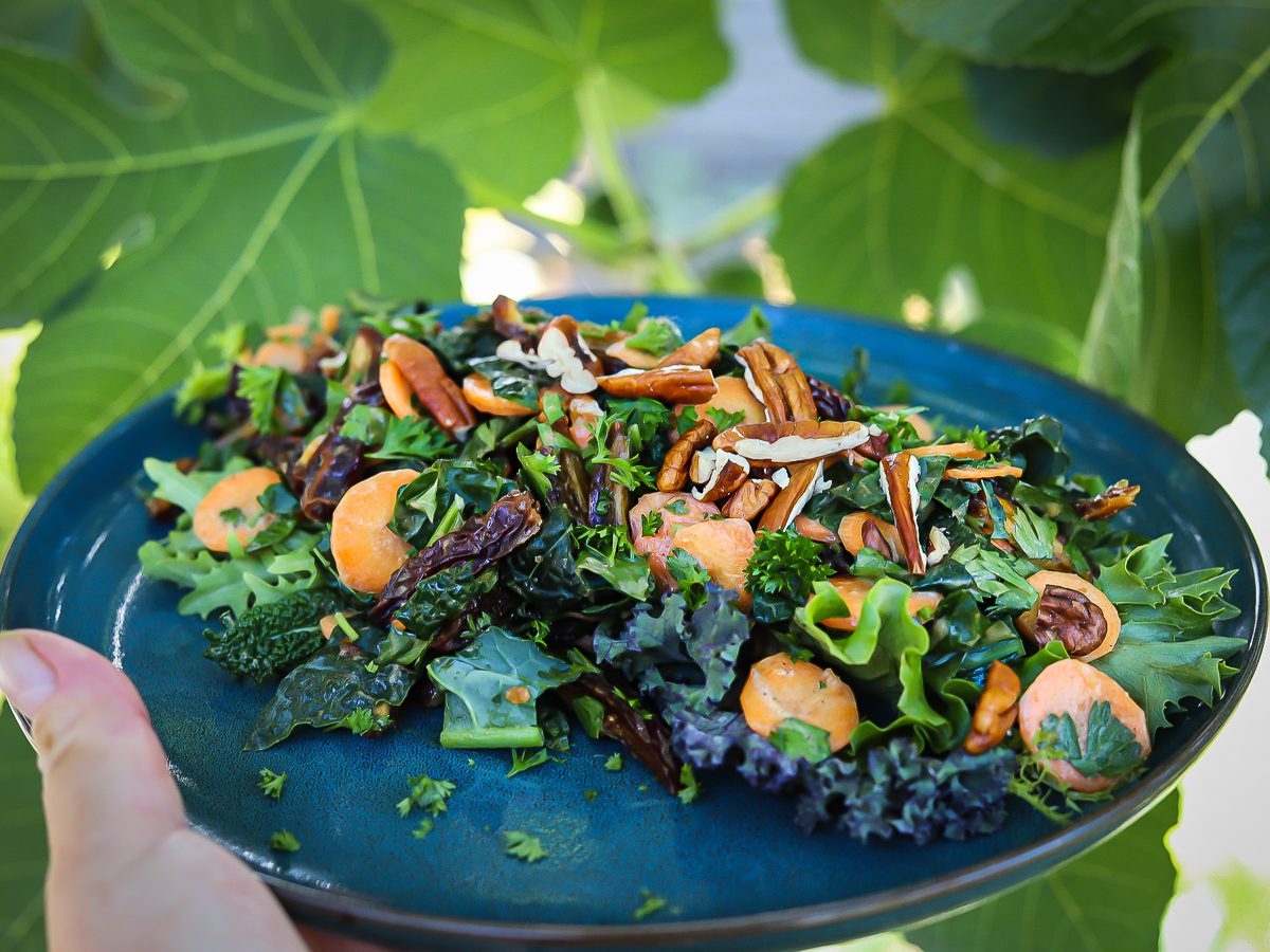 Carrot and Date salad on a blue plate outside in front of a fig tree